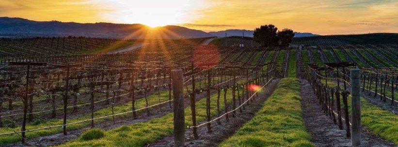 Weber Creek Winery – This is Only a Test Listing